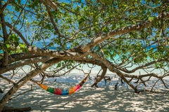Hammock Tree Straps hang over the beach under shade day time wid. Hammock Tree Straps hang over the beach under shade, nobody on day time wide shot background at Royalty Free Stock Photos