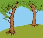 Hammock on tree. Vector illustration Royalty Free Stock Photography