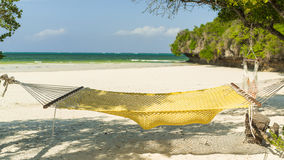 Hammock between the trees.holiday Stock Photography