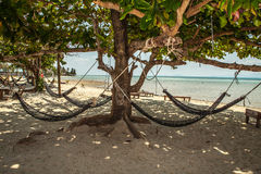 Hammock on tropic beach Royalty Free Stock Photo
