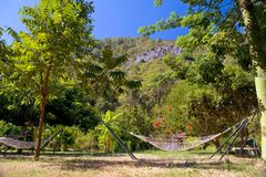 Hammock on tropic lawn Royalty Free Stock Images