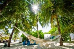 Hammock at tropical bar Royalty Free Stock Image