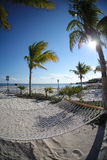 Hammock on tropical beach Stock Images