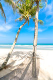 Hammock in a tropical beach.  Royalty Free Stock Images