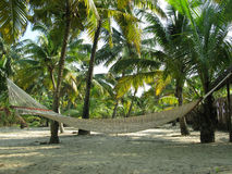 Hammock on tropical beach. An empty string hammock on a tropical beach Royalty Free Stock Photos