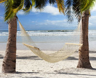 Hammock  In The Tropical Beach Stock Photography