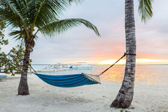 Hammock on tropical beach Royalty Free Stock Photography