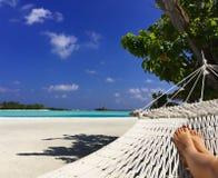Hammock on the tropical beach. A white hammock on the lagoon beach, Maldives Stock Image