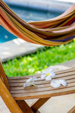 Hammock and tropical flowers Royalty Free Stock Photos