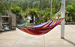 Hammock in Tropical Paradise, Honduras. A colorful hammock, with red, blue, yellow and white stripes, hangs within a tropical paradise, with plants, trees, and Royalty Free Stock Photo
