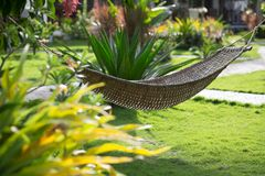 Hammock on a tropical resort Royalty Free Stock Images
