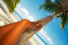 Hammock tropico fotografia de stock