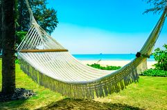 Hammock between two palm trees on the beach Royalty Free Stock Image
