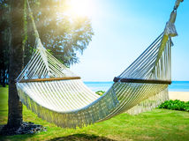 Hammock between two palm trees on the beach Royalty Free Stock Images
