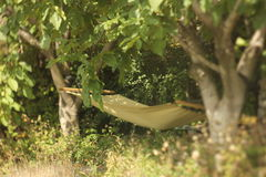 Hammock between two trees with green grass. Royalty Free Stock Photo