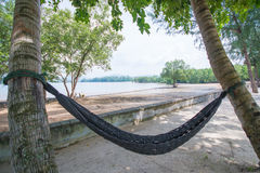 Hammock under coconut trees near the sea Royalty Free Stock Images