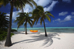 Hammock Under the Palms Royalty Free Stock Photos