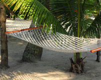Hammock under palms Stock Images