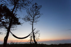 Hammock under the trees with beautiful sunrise in background.  Royalty Free Stock Photos