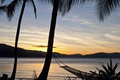 Hammock UnderThe Palm Trees. Hammock at sunset under palm trees Royalty Free Stock Photography