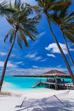 Hammock vazio entre palmeiras na praia Foto de Stock Royalty Free
