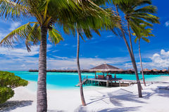 Hammock vazio entre palmeiras na praia Fotos de Stock