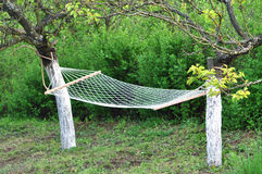 Hammock. View on a suspended hammock in a tree Stock Image