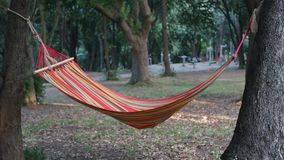 Hammock in the woods Royalty Free Stock Images