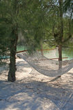 Hammocks. Two hammocks in the shade of tropical trees Royalty Free Stock Photography