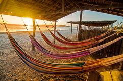Hammocks. On a beach at sunset Stock Photo