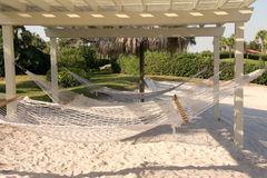 Hammocks immagine stock