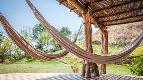 hammocks fotos de stock royalty free