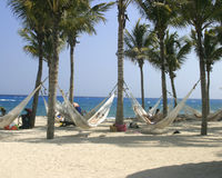 Hammocks on the Beach. Attached to palm trees overlooking the ocean in Mexico royalty free stock photos