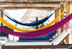 Hammocks on a beach Stock Images