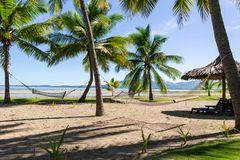 Hammocks on Fiji beach waiting for visitors to relax on them. Hammocks hanging between palms on paradise tropical island luring tourists to enjoy the beautiful stock images