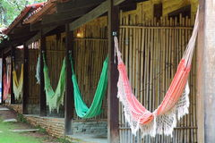Hammocks hanging at resort Stock Images