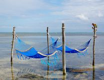 Hammocks in the Ocean. Hammocks in the caribbean sea, with reflection in the water. Ambergris Caye, Belize Stock Images