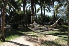 Hammocks between palms. At the sea shore Royalty Free Stock Photos
