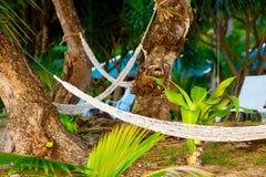 Hammocks on Resort Royalty Free Stock Photos