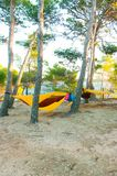 Hammocks suspended on the tree, camping by the lake royalty free stock photo