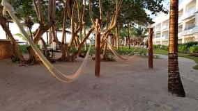 Hammocks in the tourist village in mexico Royalty Free Stock Images