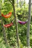 Hammocks between trees Stock Images