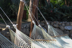 Hammocks on tropical beach. Stock Image