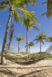 Hammocks in a Tropical Paradise. Two hammocks gently swaying in the cool Caribbean sea breeze stock photo