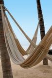 Hammocks vuoti sulla spiaggia Immagini Stock