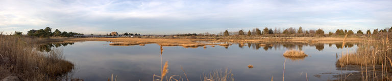 Hammonasset Beach Marsh Panorama Stock Image