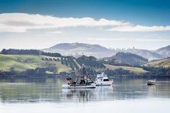 Hamn av Mangonui, Nya Zeeland Arkivbild
