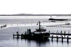 Hamn av Sassnitz arkivbild