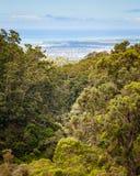 Hamn för scenisk sikt för landskap pärlemorfärg Fotografering för Bildbyråer