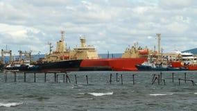 Hamn på Punta Arenas stock video